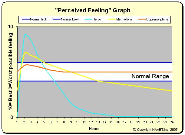 Bupe half life graphs addiction survivors peer support forum